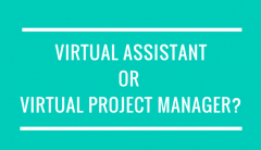 Virtual Assistant or Virtual Project Manager