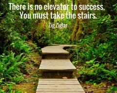 There is no Elevator To Success - You Must Take the Stairs - Why Research is Crucial to Book Marketing